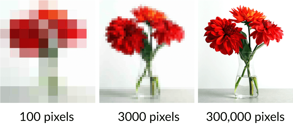 flowers-and-pixels